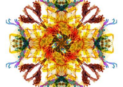 Ancient Wisdom mandala full image