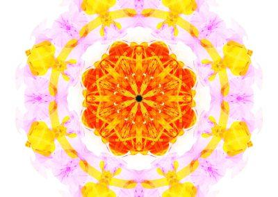 Creativity mandala full image