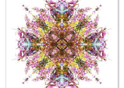 Presence Within mandala