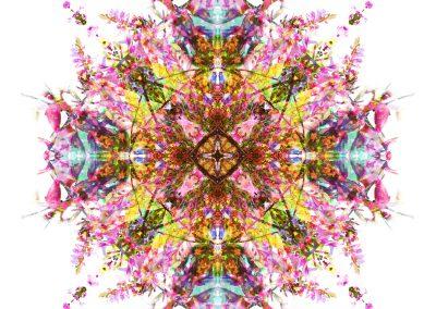 Presence Within mandala full image