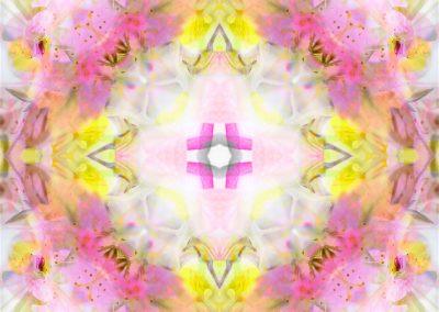 Rescue Remedy Mandala full image